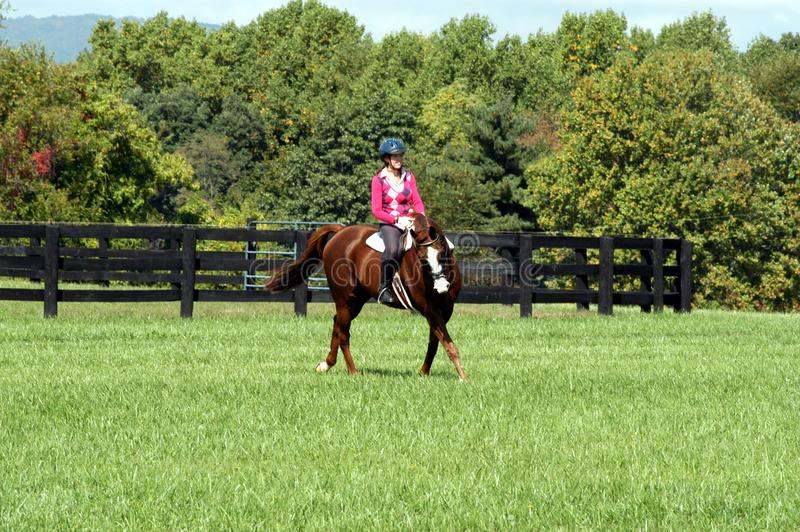 Sunny Day Ride in Middentennessee royalty-vrije stock fotografie