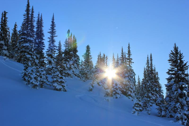 Sunny day in a winterwonderland stock photos