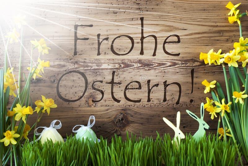 Sunny Egg And Bunny, Gras, Frohe Ostern significa a Páscoa feliz fotografia de stock royalty free