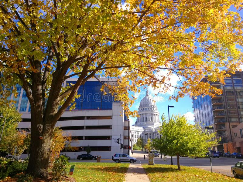 Fall in Madison royalty free stock photos