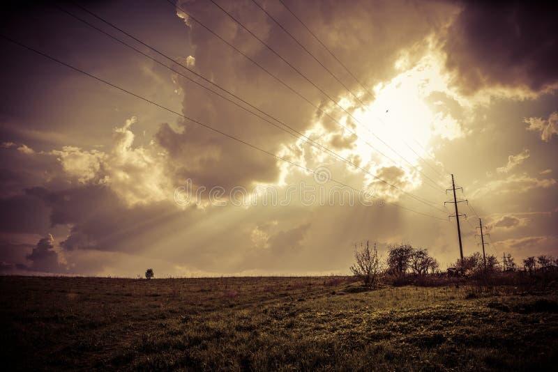 Sunny field stock photos