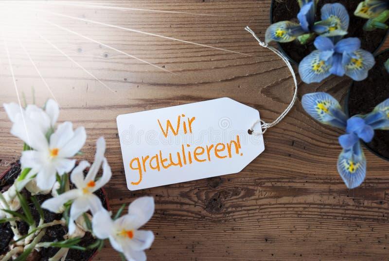 Sunny Flowers, etiqueta, Wir Gratulieren significa felicitações foto de stock royalty free