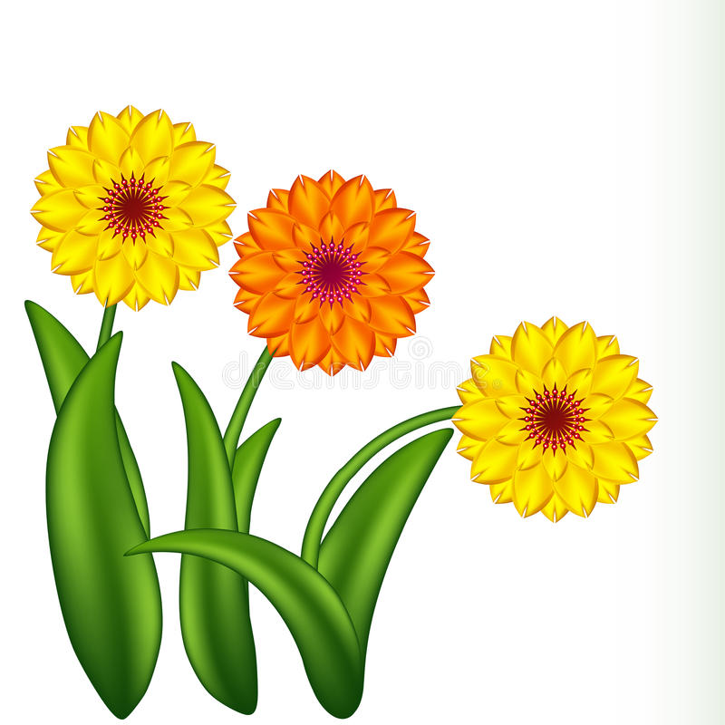 Sunny flowers. Gradient meshes. royalty free stock images