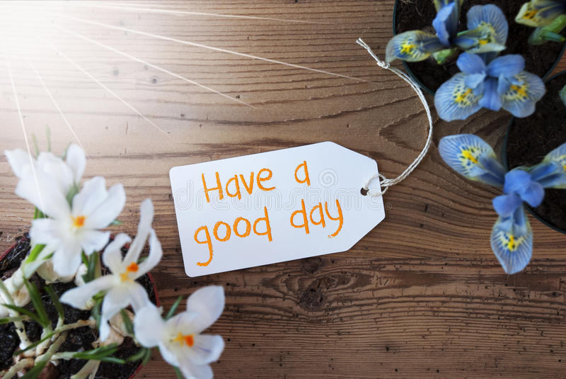Sunny Flowers, Label, Quote Have A Good Day. Sunny Label With English Quote Have A Good Day. Spring Flowers Like Grape Hyacinth And Crocus. Aged Wooden royalty free stock photography