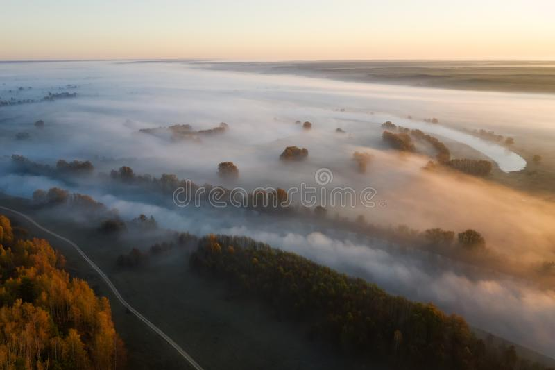 Sunny and foggy morning over the river, fog in the sun. stock photos
