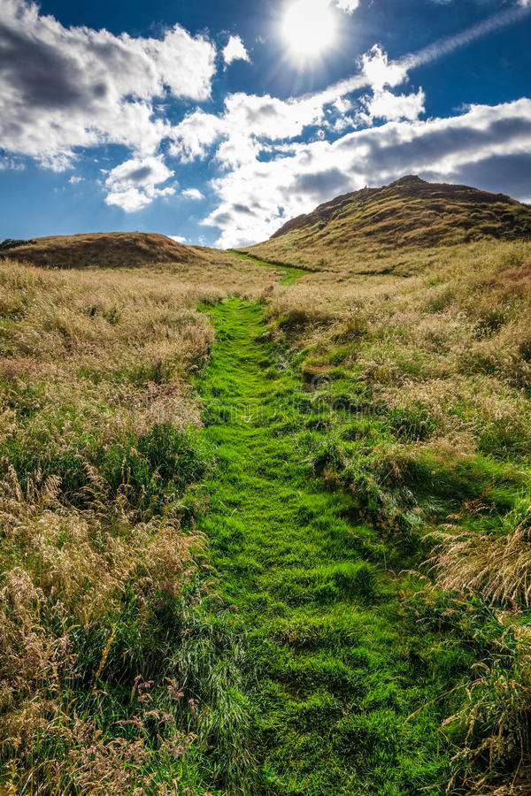 Sunny footpath to the hill royalty free stock photo