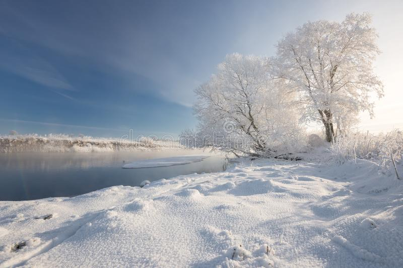 Sunny Frosty Winter Morning. A Realistic Winter Belarusian Landscape With Blue Sky, Trees Covered With Thick Frost, A Small River. And A Village On The Opposite stock photos