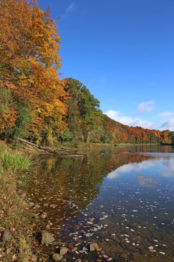 Sunny Grand River lizenzfreie stockbilder