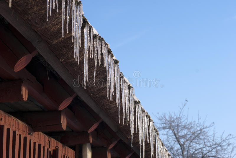 Sunny icicles royalty free stock photos