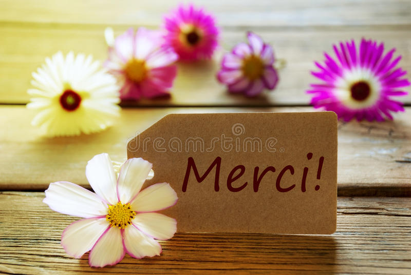 Sunny Label With French Text Merci med Cosmea blomningar royaltyfria bilder