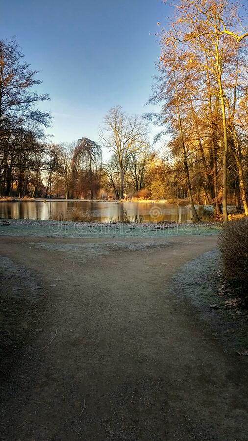 Sunny lake in the park. 2020 royalty free stock image