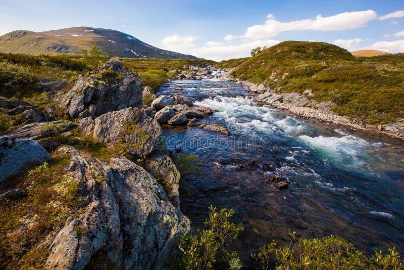 Sunny landscape Norway mountains Dovrefjell river.  stock photos