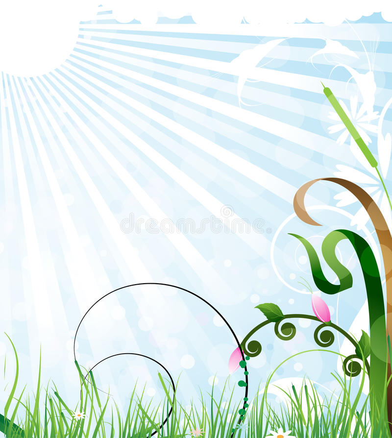 Download Sunny meadow stock vector. Image of field, lush, landscape - 20917688