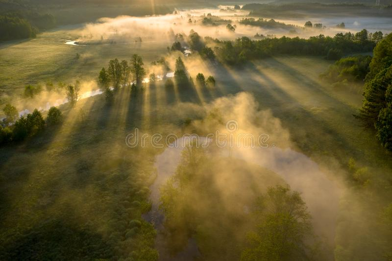 Sunny misty morning nature landscape aerial view. View from above of sun rays through trees in fog on grassy meadow near river. Beautiful summer background royalty free stock photo
