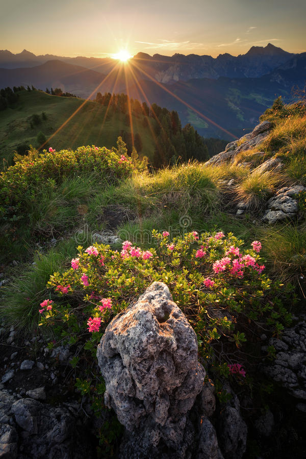 Sunny morning in the Dolomites stock photography