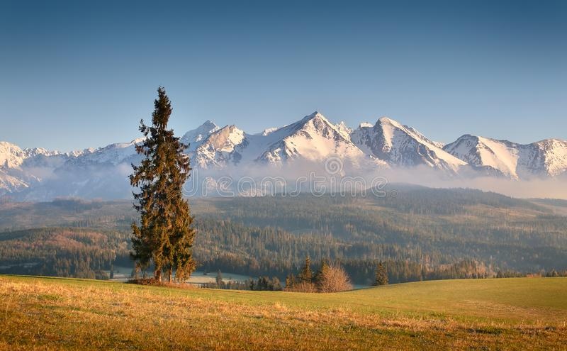 Sunny morning in mountains royalty free stock photography