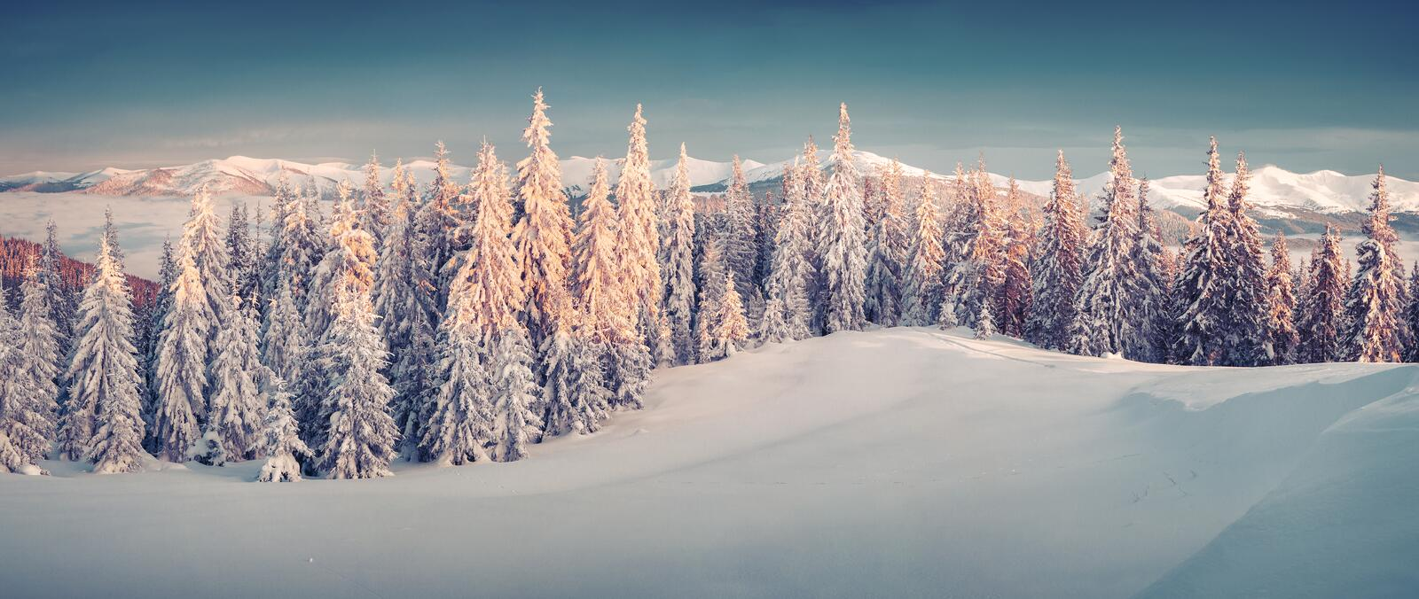 Sunny morning panorama in the winter mountain. Instagram toning royalty free stock images