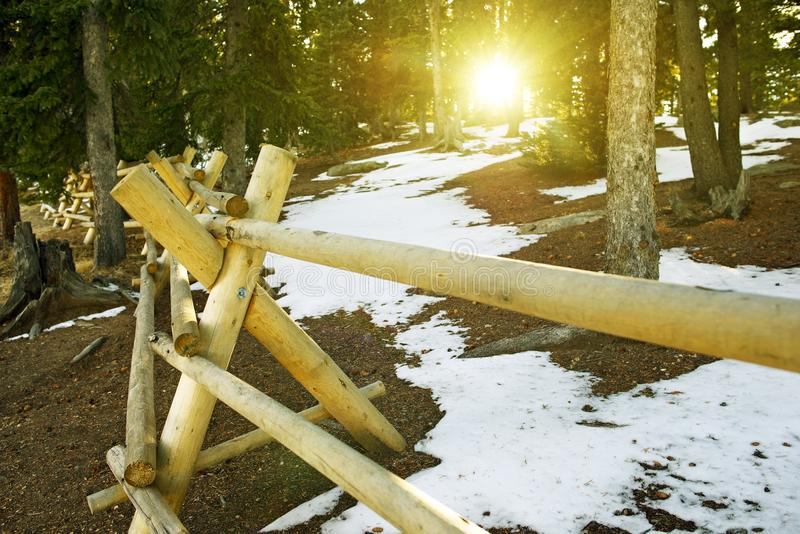 Sunny Mountain Trail stock photos