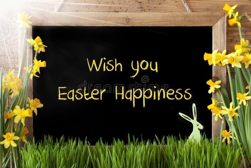 Sunny Narcissus, coniglietto, desiderio del testo voi felicità di Pasqua fotografia stock