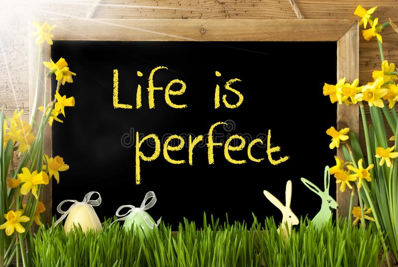 Sunny Narcissus, Easter Egg, Bunny, Quote Life Is Perfect royalty free stock photo