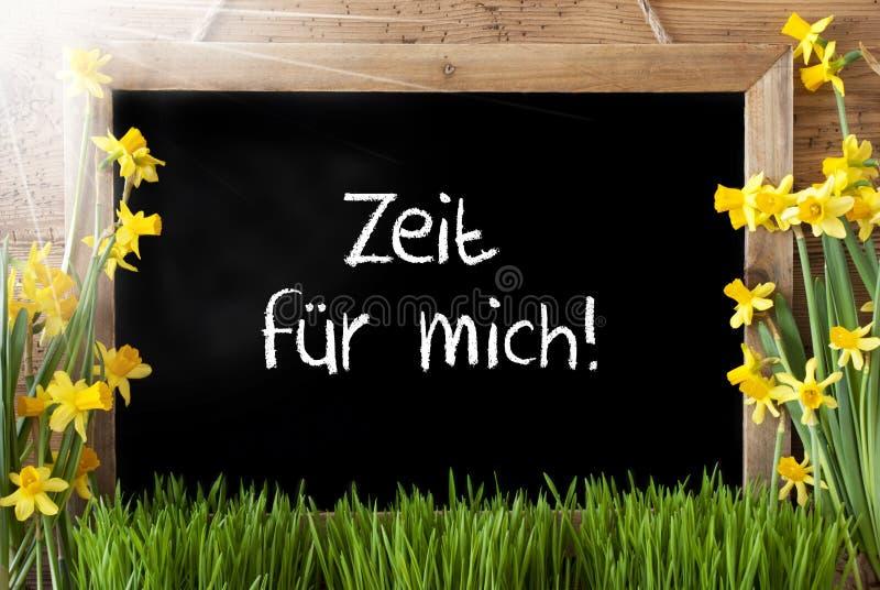 Sunny Narcissus, tempo di mezzi di Zeit Fuer Mich per me fotografia stock