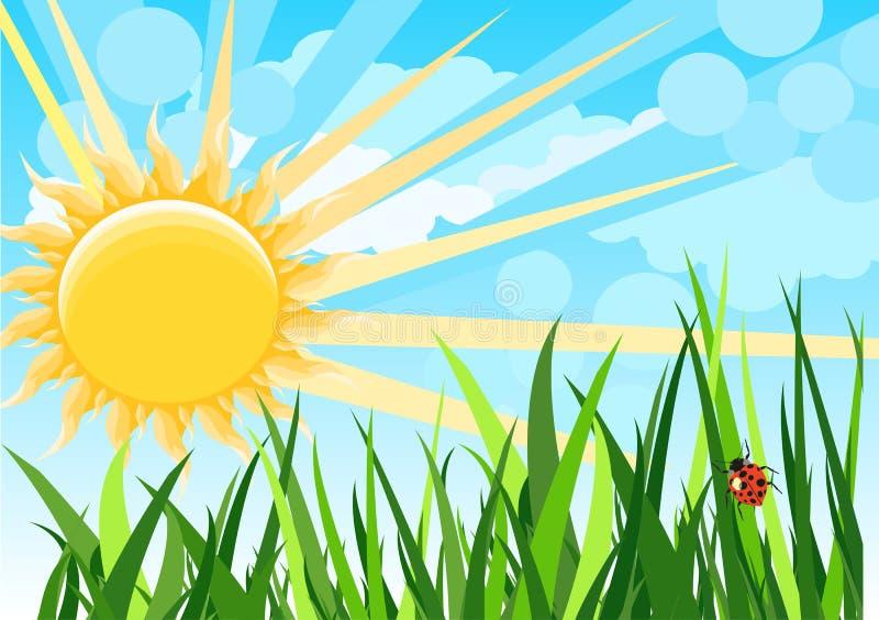 Sunny natural funny cartoon background vector illustration vector illustration