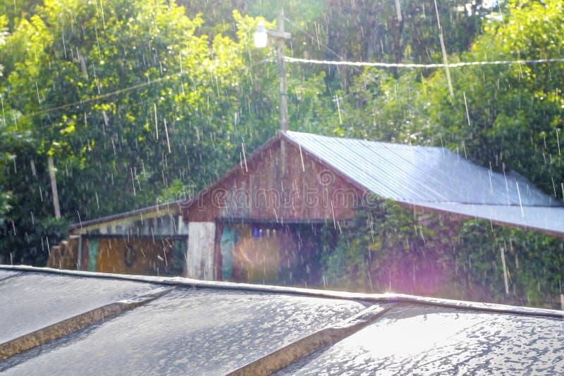 Sunny Rain in mijn Binnenplaats stock afbeelding