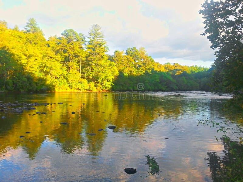 Sunny River royalty free stock photography
