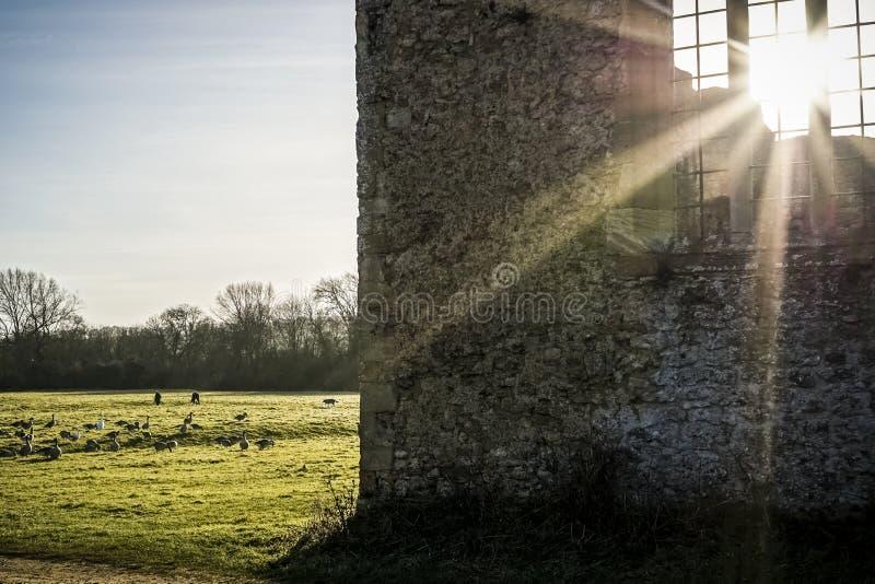 Sunny Ruins foto de archivo