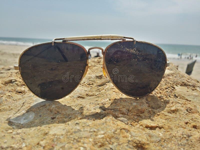 Sunny royalty free stock photo