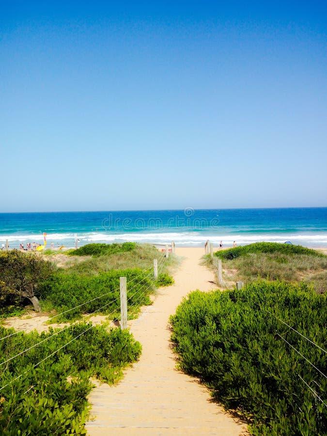Sunny Sandy Path fotografia stock libera da diritti