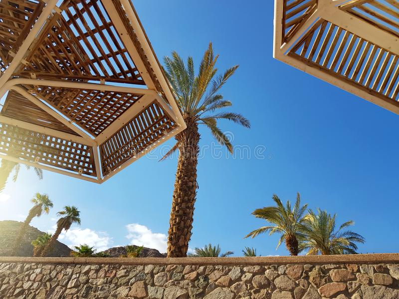 Clear sunny sky and beach umbrellas in Eilat resort; Israel. Sunny sky and beach umbrellas in Eilat resort; Israel royalty free stock images