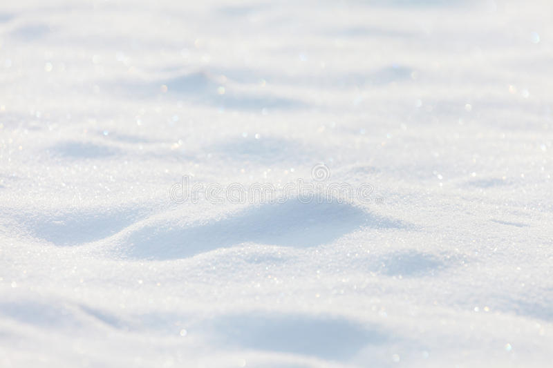Sunny snow background. With shades royalty free stock photography