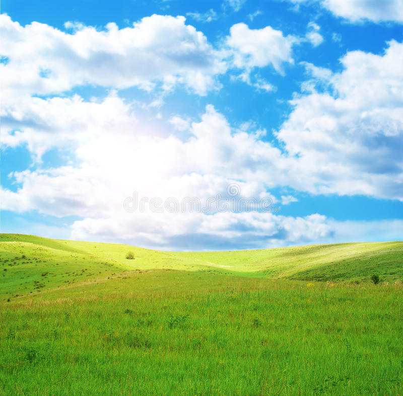 Sunny spring day and field royalty free stock photos