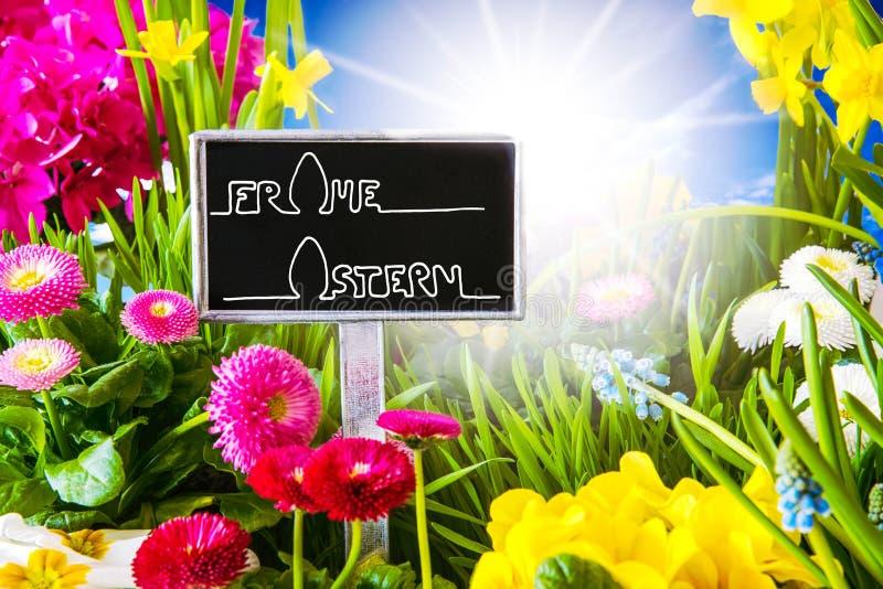 Sunny Spring Flower, caligrafía Frohe Ostern significa Pascua feliz fotografía de archivo