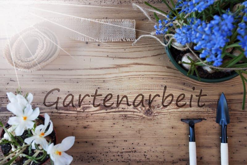 Sunny Spring Flowers, Gartenarbeit-Durchschnitt-Gartenarbeit lizenzfreies stockbild
