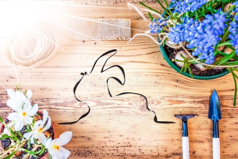 Sunny Spring Flowers, illustration de lapin de Pâques, fond en bois photos libres de droits