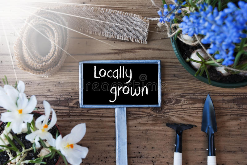 Sunny Spring Flowers, Sign, Text Locally Grown. Sign With English Text Locally Grown. Sunny Spring Flowers Like Grape Hyacinth And Crocus. Gardening Tools Like stock image