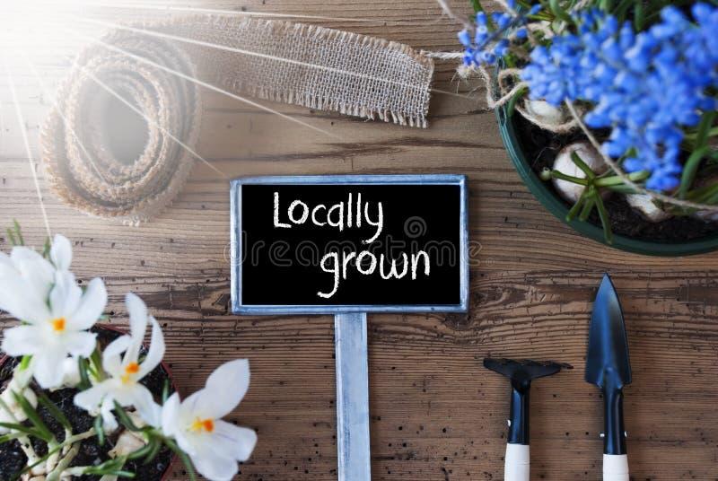 Sunny Spring Flowers tecken, smsar lokalt fullvuxet fotografering för bildbyråer