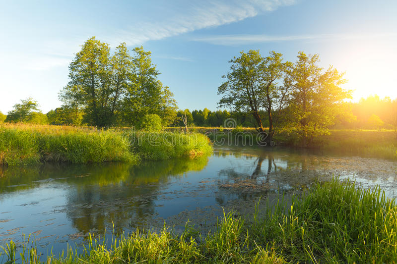 Sunny spring landscape. Blue water in lake and green grass illuminated by rising sun stock photography