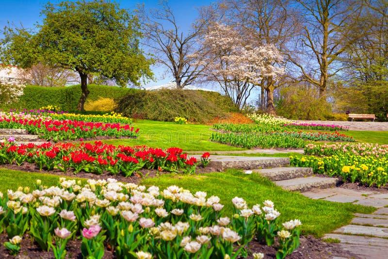 sunny spring morning in the botanical garden of essen town. Black Bedroom Furniture Sets. Home Design Ideas