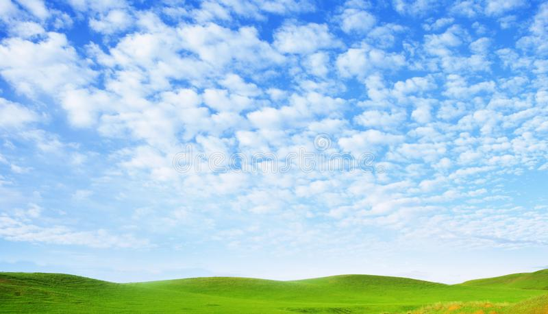Sunny summer landscape. Spindrift clouds. Cirrus clouds against the blue sky above the hills covered with green fresh grass. Sunny summer landscape. Spindrift royalty free stock photo