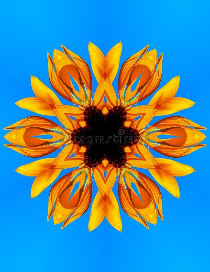 Sunny Sunflower Flower Design Mandala image stock
