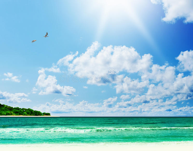 Download Sunny Tropical Beach On The Island Stock Image - Image of scenery, foam: 29041887
