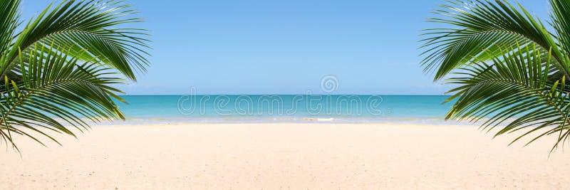 Sunny tropical beach royalty free stock photography