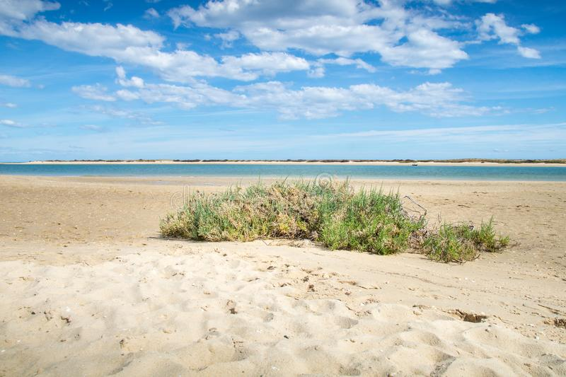 Sunny view of the local beach in Fuseta, Ria Formosa Natural park, Portugal.  stock image