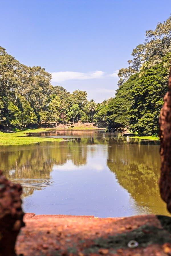 Sunny Water Pond Scene rurale con cielo blu - stagno di acqua con una riflessione soleggiata degli alberi in una zona rurale bosc immagine stock libera da diritti