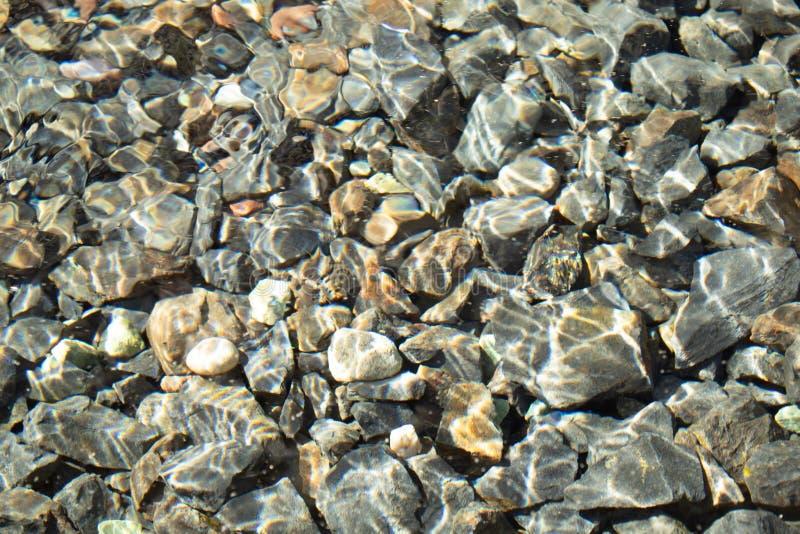 Sunny Water Texture royaltyfri foto