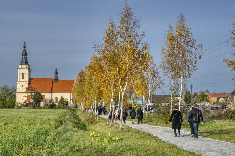 On a sunny autumn day, people go birch alley towards the church. Sunny weather favors walking and meditation, people go to church for prayer and mass after a stock photo