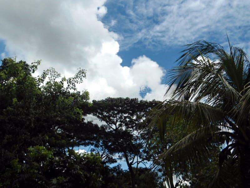 Sunny Weather stock photo